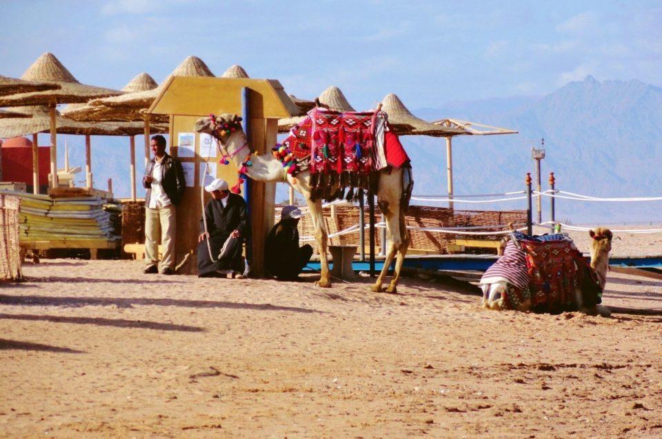 I locali di Sharm El Sheik – Egitto