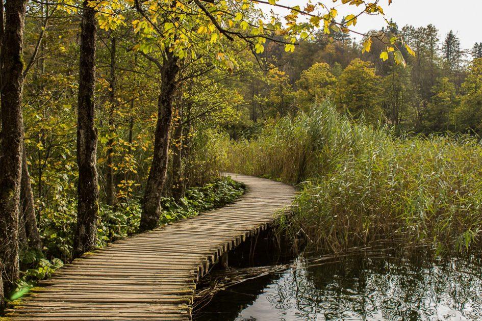Colori d'autunno ai laghi di Plitvice, le migliori destinazioni europee da visitare in autunno
