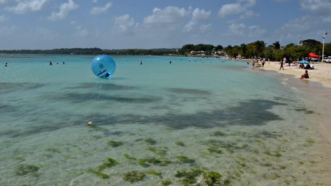 caraibi guadalupa1