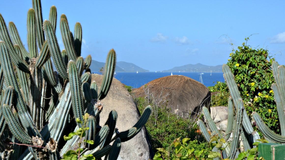 caraibi tortola3
