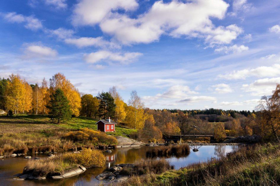 La ruska colora l'autunno in Finlandia, una delle 7 migliori destinazioni europee da visitare in autunno