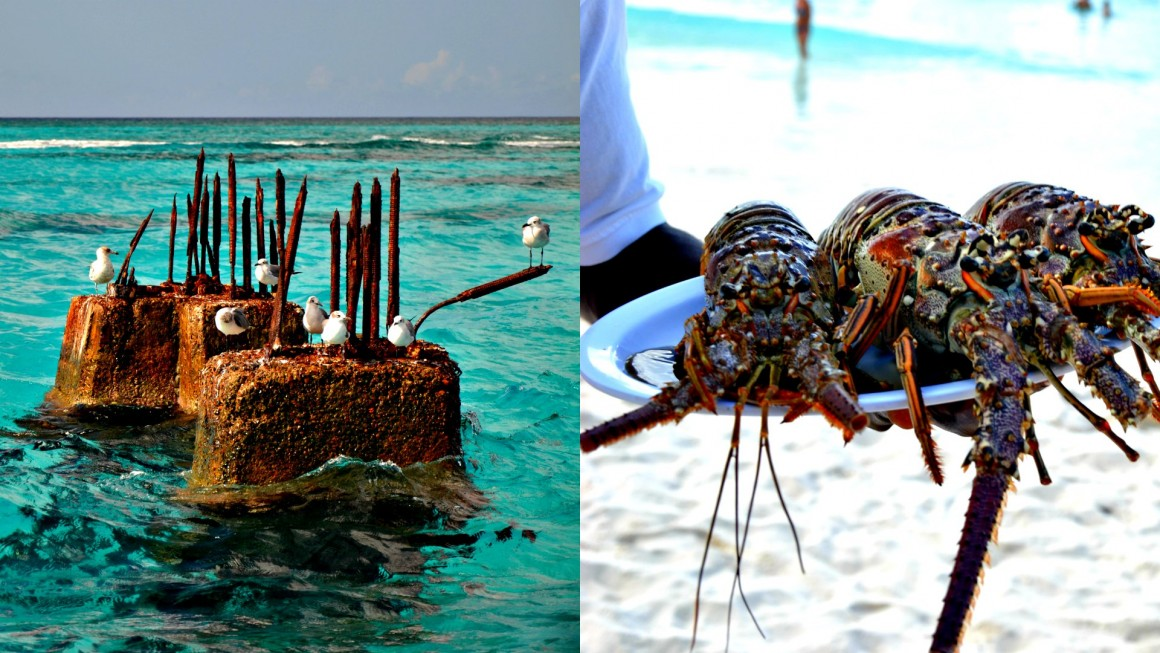 caraibi rep dominicana4
